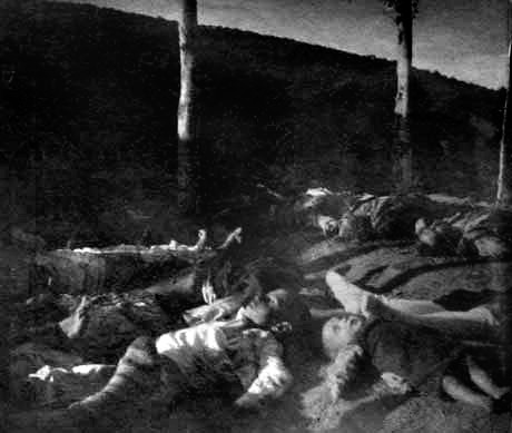 The Thirty-Year Genocide: Turkey's Destruction of Its Christian Minorities, 1894–1924 (Benny Morris and Dror Ze'evi)