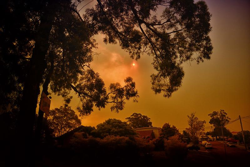 Brutal Bushfires Torch Eastern Australia, Encroach on Sydney Suburbs