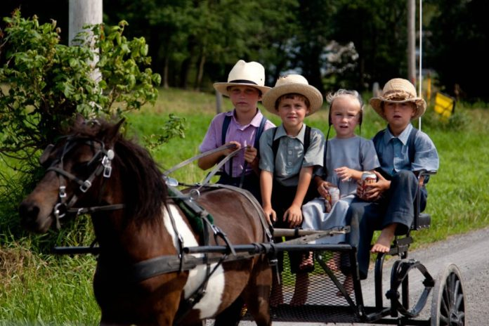 New York Court Rules Amish Children Cannot Use Religious Vaccine Exemption to Attend Their Own Schools