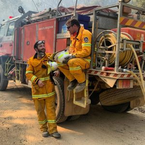 Facing the Flames: Fire Reduction and the New South Wales Bushfires