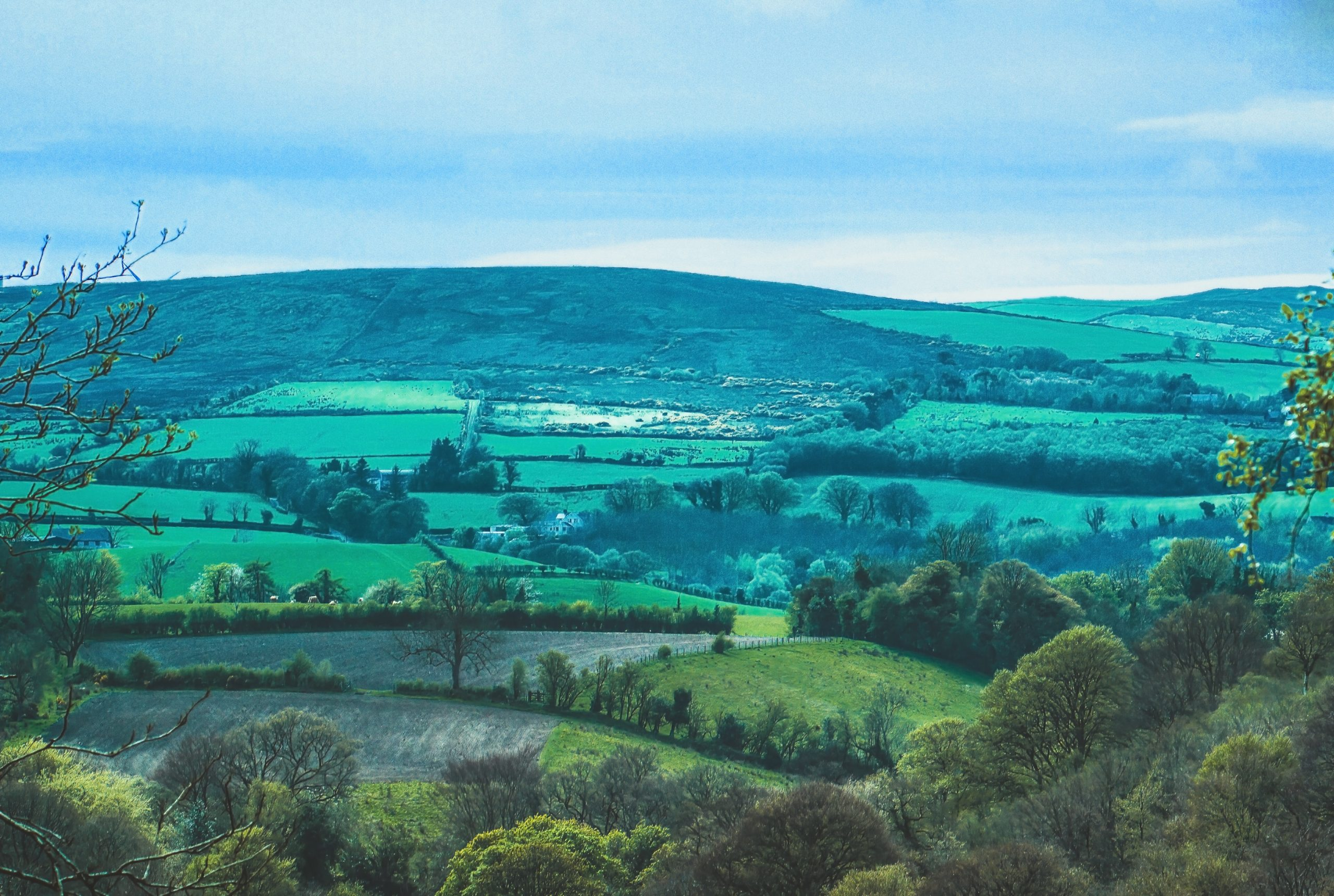 The Brexit Agreement and Regulatory Checks Affecting Northern Ireland